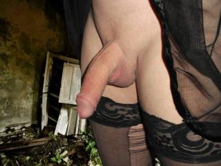 My big hard cock for you  tranny in stockings