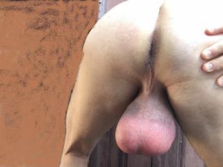 I have Big Bull Balls 1 of 17