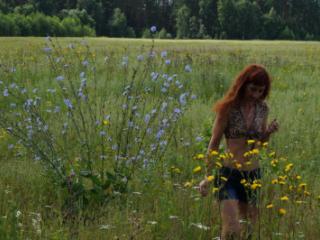 In spring Field
