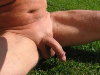 My best cock collection photos