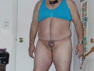 Sub willie collared and chained