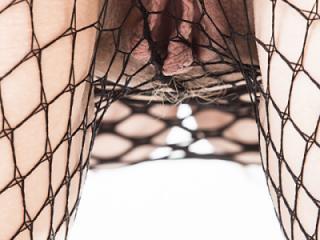 SexyDC Fishnet