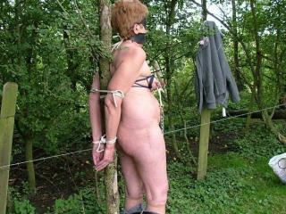 Mature tied outdoors