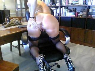 Roxy in the office